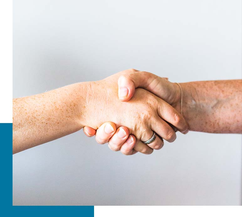 Handshake between the Novogen team