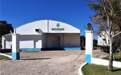 NOVOGEN DO BRASIL and the pandemic