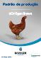 Aves de postura : Padrão de produção NOVOgen Brown