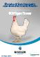Commerciales : Objectif de production NOVOgen Tinted