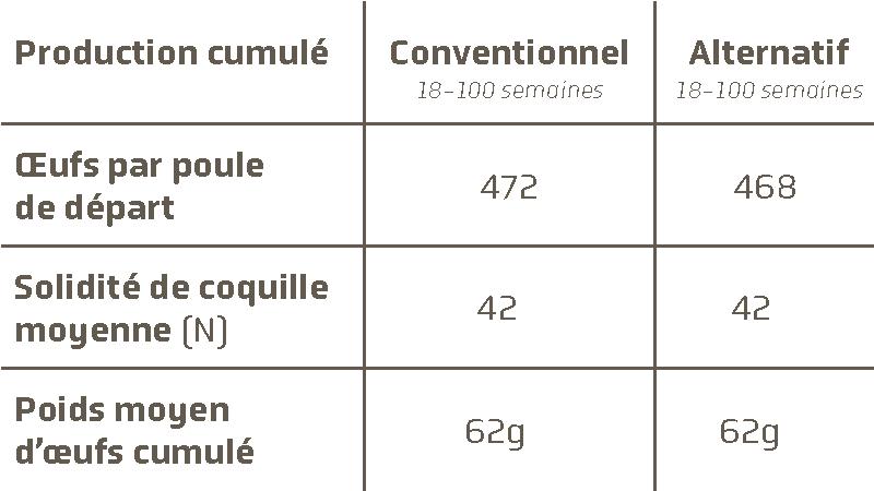 poule brune novobrown