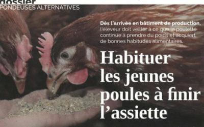 HABITUER LES JEUNES POULES A FINIR L'ASSIETTE